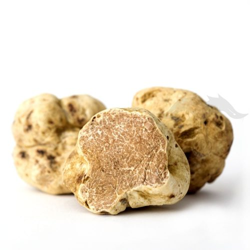 Fresh White Truffles